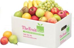 Thùng carton đựng – đóng gói thực phẩm